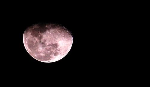 I wish I was the moon... (Gustavo Allves) moon coolpix lua nikoncoolpix l810 coolpixl810