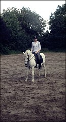 racker I (juhlsofficial) Tags: julia pony welsh montain dressage dressur racker