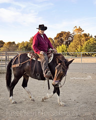 Frank & Otis (Pony girl2 (catching up..again)) Tags: training riding mule equine eveninglight roundpen yielding mammothjack d700test