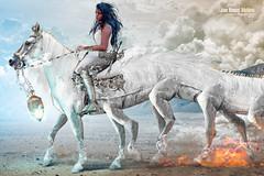 Sleipnir, el Semental de Odn (Mollev) Tags: horse woman sexy blanco girl insect caballo fire idea war spectrum legs flames chick fantasy iguana patas odin stallion freya milagro asgard potro reptil sleipnir semental escolopendra ciempis mollev jmspectrum