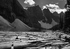 (advance.to.go) Tags: road wood travel blue trees urban blackandwhite brown white lake snow canada black mountains travelling green calgary nature water beautiful up tarmac clouds rural america wonder landscape rockies grey boat highway stag kayak skiing natural outdoor timber wildlife hill rocky roadtrip canadian canoe glacier deer snowcapped driftwood alpine filter journey alberta oil manmade northamerica rowing banff leisure rockymountains geography geology elk pick lakelouise paddling province lakemoraine pursuite