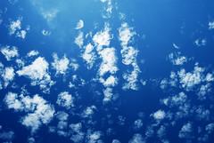 Nebo (Sareni) Tags: blue light summer sky colors clouds serbia july sm leto vojvodina twop srbija nebo banat 2016 boje svetlost oblaci plavo alibunar juznibanat sareni savemuncana