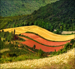 Childs drawing (Katarina 2353) Tags: summer film landscape nikon europe serbia katarinastefanovic katarina2353