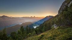 Sunrise at Niederbauen (pixadeleon) Tags: sonnenaufgang sunrise aussicht mythen vieraldstttersee view seelisberg mountains berge switzerland schweiz trees beams sonnenstrahlen