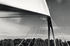 Isoisansilta, Farfarsbron (pni) Tags: tree sky cloud metal steel tensionrod monochrome bridge architecture detail isoisnsilta farfarsbron helsinki helsingfors finland suomi pekkanikrus skrubu pni