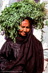 Carrying khat (gwpics) Tags: culture upright people aswan nubian woman clothes streetphotography egyptian hijab egypt film khat female lady person socialcomment socialdocumentary society strasenfotograpfie vertical women cathaendulis lifestyle streetpics