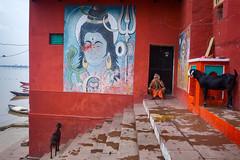 Varanasi - 2016 (dsaravanane) Tags: saravanan dhandapani dsaravanane yesdee yesdeephotography yesdee saravanandhandapani streetphotography life streetlife varanasi up india ganges lifeinganges riverganga varanasi2016 floodinganges monsoonvaranasi varanasiboat ricohgrii ricoh grii grii gr2 streetofvaranasi