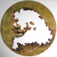 Big Cats: Lion (Leonisha) Tags: puzzle jigsawpuzzle unfinished
