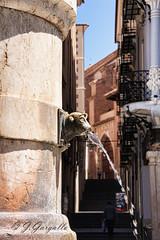 Fuente del Torico (Teruel) (J.Gargallo) Tags: teruel aragn torico fuente espaa eos eos450d 450d canon canon450d canonefs18200 spain agua