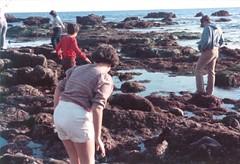 Walking Around the Tide Pools - c1985 (kimstrezz) Tags: 1985 biketriptodohenystatebeach kim dad bert tidepools danapointharbor
