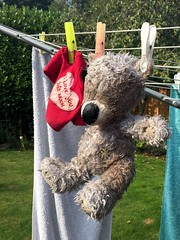 Big Ted (Heaven`s Gate (John)) Tags: bigted johndalkin heavensgatejohn soft toy sunshine washing line clean health hazard dog springer spaniel solihull england clothes peg fur red shirt iloveyou