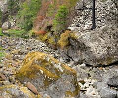 Skagit River (kewing) Tags: skagitriver