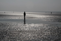 Liverpool 001 (mitue) Tags: liverpool antonygormley anotherplace