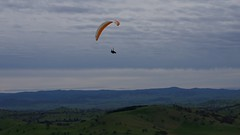 Johno2 (overflow50) Tags: canberra paragliding paraglider spring springhill sky clouds