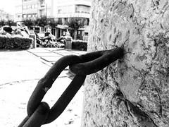 Encadadenados (Gema Cubillos) Tags: cadenas