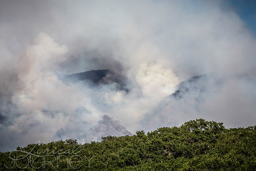 Alpine Quail Fire (9 of 33)