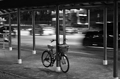 Lights Will Guide You Home (sarahtanml) Tags: road lighting street roof light blackandwhite bw cars grass bike bicycle 50mm lights support focus singapore quiet nightlights shadows silent basket lock pavement
