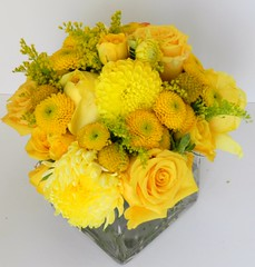 DSCN2275 (AimStudios) Tags: wedding yellow room gray yellowroses 1520 solidago craspedia yellowdahlias yellowsprayroses yellowfootballmums yellowbuttonpompons yellowgardenroses