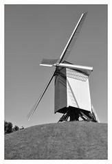 BRUGES #3 (Spaceopera) Tags: old bird mill monochrome moulin swan nikon belgium bricks brugge bruges flanders d90 flandre vlanderen nikond90
