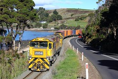 Trains In Tasmania -  2054 seen between Ulverstone and Penguin (Trains In Tasmania) Tags: train gm australia tasmania bronco 136 freighttrain emd intermodal goodstrain tasrail containertrain northwesttasmania canoneos550d trainsintasmania stevebromley 2050class