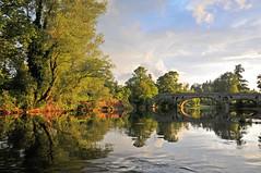 Pant-y-Goitre (RogerReg) Tags: wales bridges riverusk monmouthshire pantygoitre