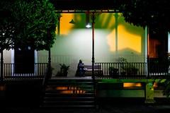 Só. (DeniSomera) Tags: verde mulher noturna noite luzes turismo árvore sombras nordeste turista sergipe aracajuse centrodeartesanatodearacaju