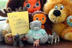 Welcome to Klaipeda, Lithuania (KaterRina) Tags: bear trip friends toy toys pig visit welcome klaipeda lithuania pukatukas peacepig