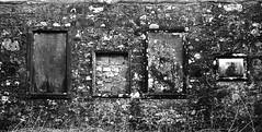 Four Familys (Ralph-Thompson) Tags: travel blackandwhite graveyard scotland glasgow freelance ralphthompson