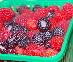 "Raspberries • <a style=""font-size:0.8em;"" href=""http://www.flickr.com/photos/54958436@N05/7779451658/"" target=""_blank"">View on Flickr</a>"
