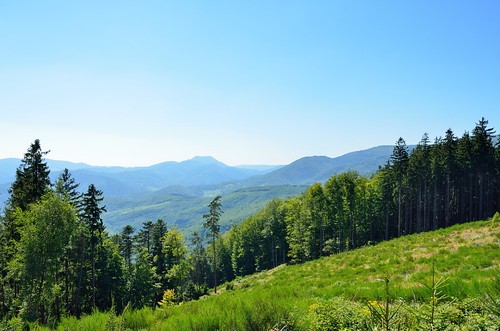 Landscape in the Vosges Mountains