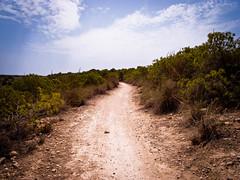 Path, Gran Alacant (Joe Magowan) Tags: trees sun hot nature digital spain europe desert dry august alicante gran barren ricoh compact 2012 alicant gx100