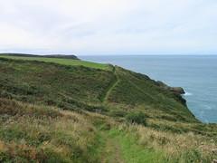 PEMBROKESHIRE COAST PATH   IMG_8213 (LesD's pics) Tags: footpath pembrokeshirecoastpath coastcountry