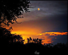 sitting on the moon (V Bogdan) Tags: city blue trees light sunset orange sun moon colour forest evening ray peace magic tranquility halo calm luna enigma crater romania nights pace prahova 1001 lumina apus raza oranj soare copaci albastru liniste padure portocaliu seara amurg culoare mygearandmepremium mygearandmebronze mygearandmesilver mygearandmegold varbila