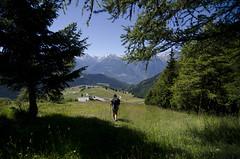 17 luglio - Rifugio Cuney - Lignan (Luca Rodriguez) Tags: aosta valle lucarodriguez moontagna mountain valledaosta trekking hiking altavia altavia1
