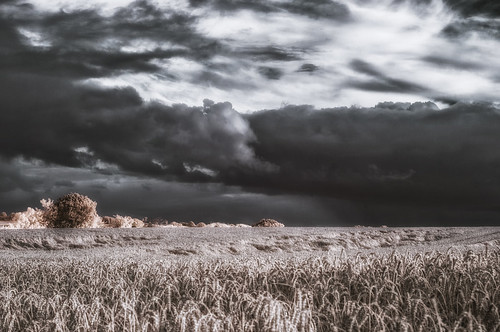 Infrared - A storm is brewing