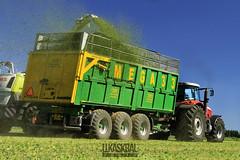 ZDT Nové Veselí MEGA 33 (Lukas Dynasty Kral) Tags: dynastyphotography lukaskralphotocz zdt zdtnoveveseli claas massey ferguson landwirtschaft harvest
