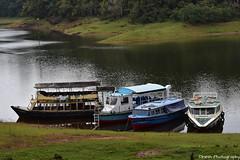 Thekkady Boating (Dinesh flicks) Tags: munnar munnarphotos munnarscenaries munnartouristspot devikulam topstation amaravathidam chinnarwildlifesanctuary thekkady dinesh photography kerala