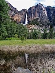A waterfalls rises (Starkrusher) Tags: yosemitenationalpark yosemite yosemitefalls inverted reflection california waterfalls