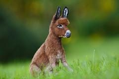 Donkey_8 (kdc123) Tags: donkey furred breyer custom ooak chestnut miniature