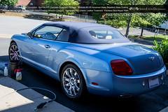 2008 Bentley Continental GT Speed (SpeedFreak Detailing) Tags: bentley bentleycontinental gtspeed suntek modesta opticoat optiglasspro optiglass pdr ppf