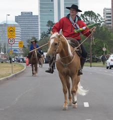 DSC_5247 (neyde zys) Tags: bandadabrigada brigadamilitar desfilefarroupilha gauchos indumentaria prendas tradicao