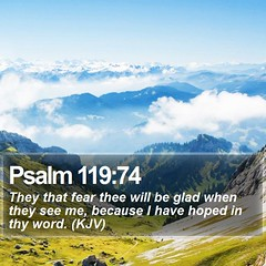 Daily Bible Verse - Psalm 119:74 (daily-bible-verse) Tags: purpose devotion spiritual votd inspirational ourfather photooftheday