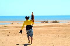 8_09_2016 (playkite) Tags: kite kiteboarding kitesurfing kiting kitelessons kiteinhurghada egypt beach beachlife adventure vacations vacation