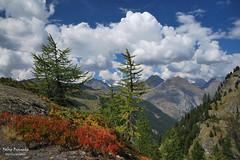 Benvenuto Autunno! (Fabio Bianchi 83) Tags: autunno autumn fall