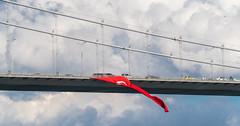DSC00177-2 (UmitCukurel) Tags: sonyalpha sony a7rii istanbul turkey turkiye turquia estambul bosphorus seagull gaviota bird bogazici vapur building architecture cloud sky bridge mosque tr