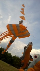 2016-09-25_virades Lacroix-Laval_6092523 (les cerfs-volants de Laetitia et Christophe) Tags: cerfvolants laetitia christophe kenny kaf ktk kangaroo kite construction fabrication couture bridage grigny rhone beauducel zoo animaux gonflables cerfvolant gonflable monofil