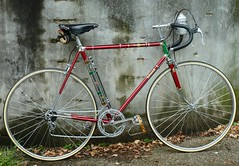 1950`s Rabeneick Campagnolo (collectvelo) Tags: