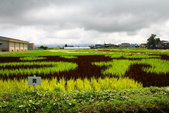 IMG_3456.JPG (tarodepon) Tags: japan aomoriprefecture eyefi inakadate