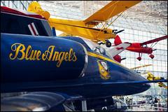 """Blue Angels"" (Eric Flexyourhead) Tags: seattle blue usa yellow museum airplane washington fighter aircraft navy jet naval blueangels kingcounty seattlemuseumofflight douglasa4fskyhawkii olympusep1 panaleica25mmf14 leicadgsummilux25mmf14asph"