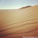on Dune 7